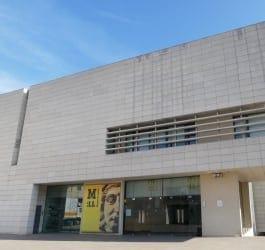Museu de Lleida Diocesà i Comarcal