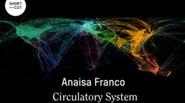 Foto La Fundació Suñol presenta el treball Circulatory System de l'artista Anaisa Franco.